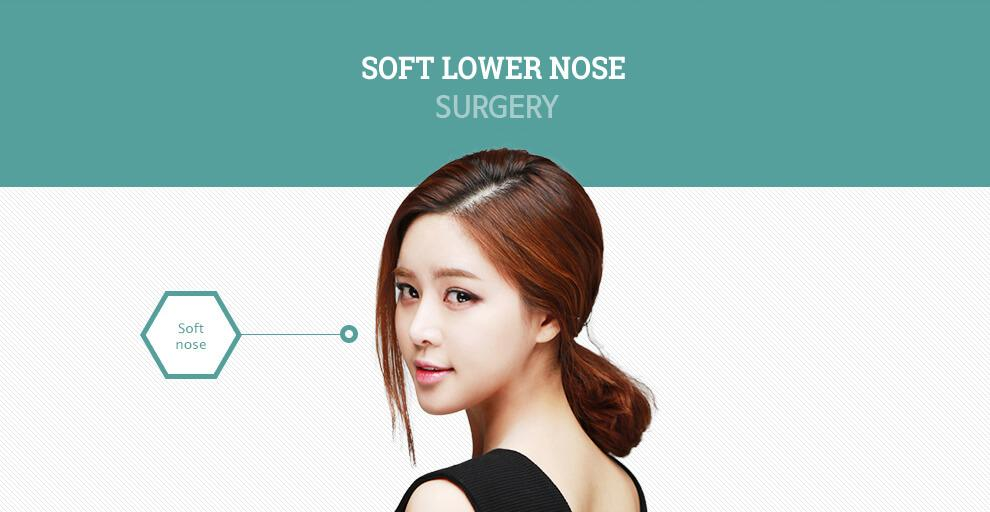 C-2 Soft Lower Nose Surgery-image 1