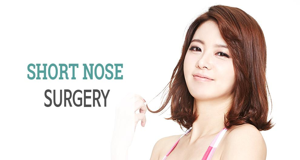 C-6 Short Nose Surgery Top Banner
