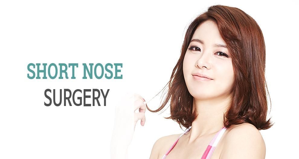 C-6 Short Nose Surgery Top Banner