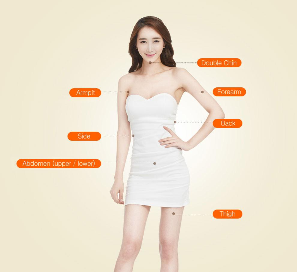 H-2 Liposuction-application area image