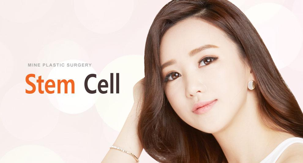 I-1 Stem Cell top banner